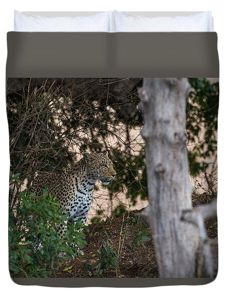 Duvet Cover featuring the photograph LC1 by Joshua Able's Wildlife