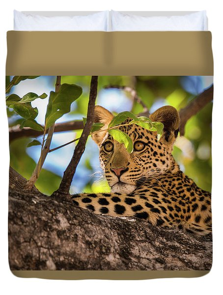 Duvet Cover featuring the photograph Lc11 by Joshua Able's Wildlife