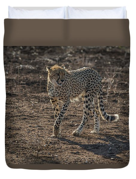 Duvet Cover featuring the photograph LC3 by Joshua Able's Wildlife