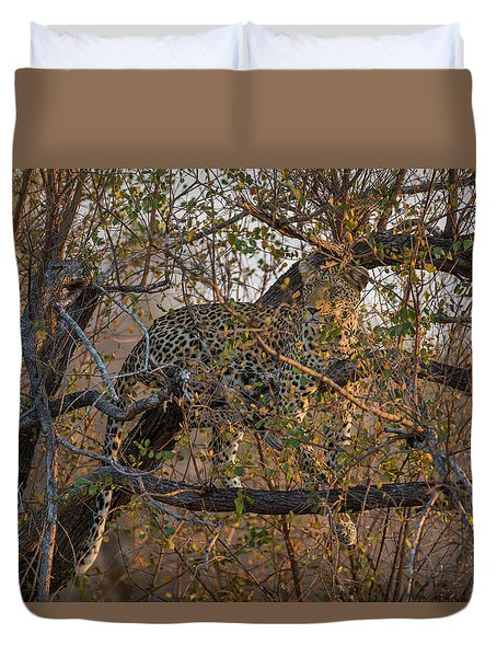 Duvet Cover featuring the photograph LC6 by Joshua Able's Wildlife