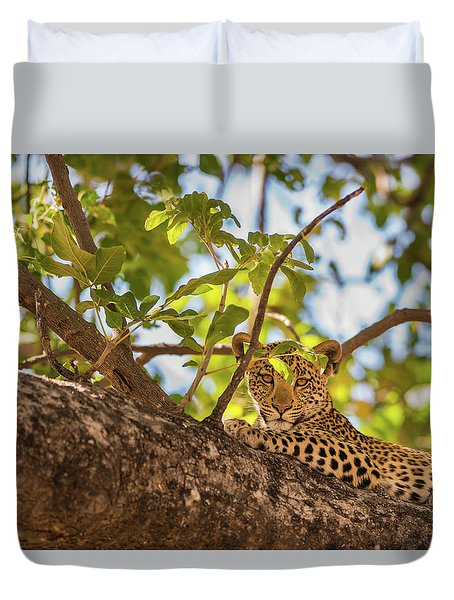 Duvet Cover featuring the photograph LC9 by Joshua Able's Wildlife
