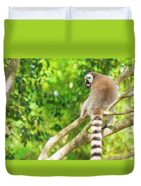 Lemur By Itself In A Tree During The Day. Duvet Cover