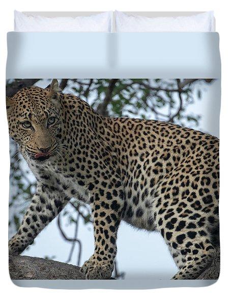 Leopard Anticipation Duvet Cover