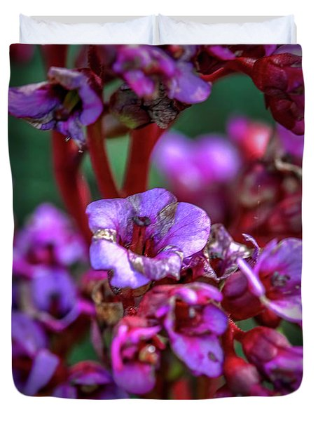 Duvet Cover featuring the photograph Lilac #h9 by Leif Sohlman