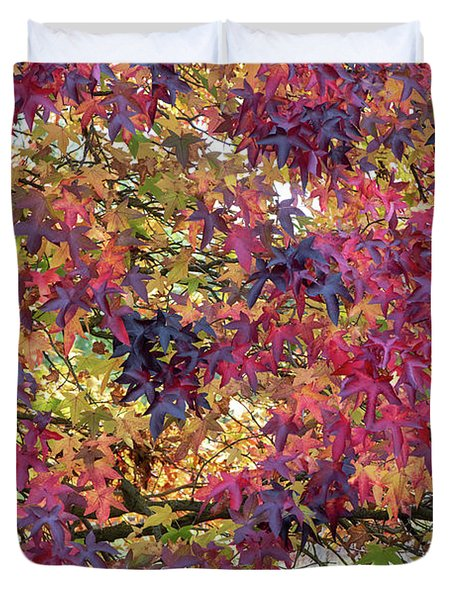 Liquidambar Leaves In Autumn Duvet Cover