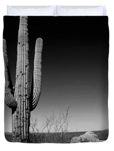 Lone Saguaro Square Duvet Cover