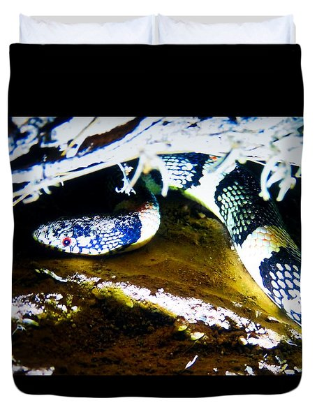 Duvet Cover featuring the photograph Longnosed Snake In The Desert by Judy Kennedy