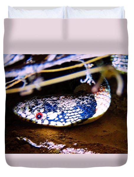 Duvet Cover featuring the photograph Longnosed Snake Portrait by Judy Kennedy
