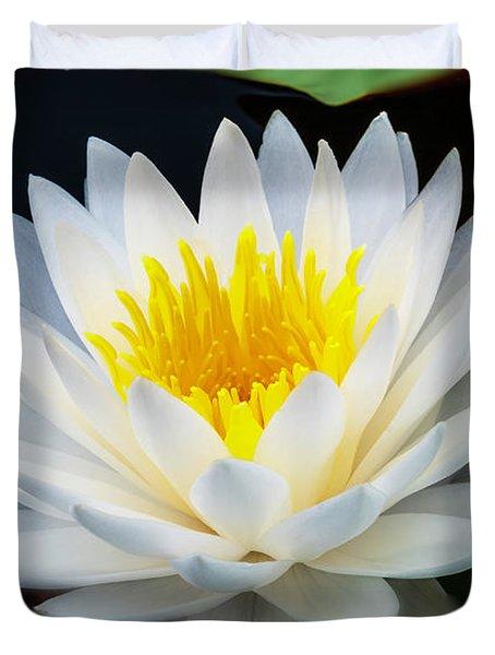 Lotus Gold Duvet Cover