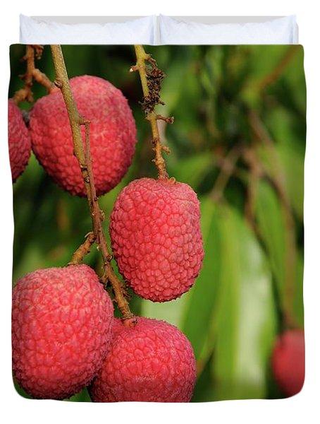 Lychee Fruit On Tree Duvet Cover