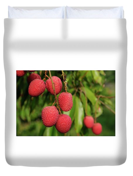Lychee Fruit On Tree Duvet Cover