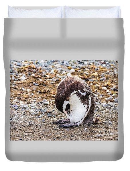 Magellan Penguin On The Isla Magdalena, Chile Duvet Cover