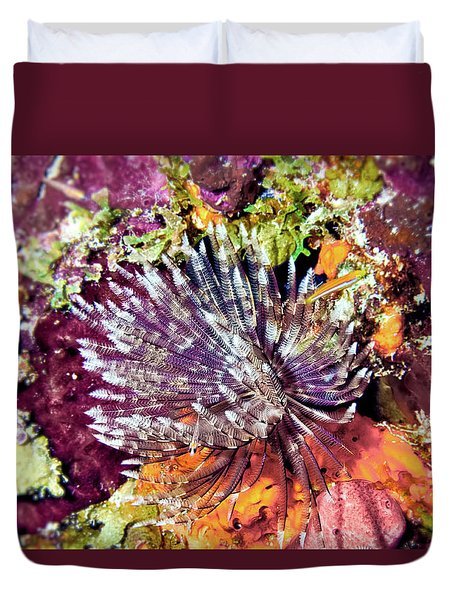 Magnificent Feather Duster Duvet Cover