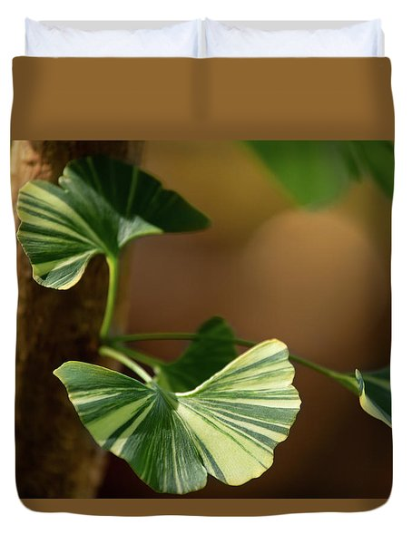Duvet Cover featuring the photograph Maidenhair Tree by Dale Kincaid