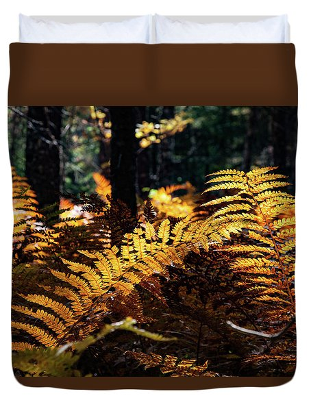 Maine Autumn Ferns Duvet Cover