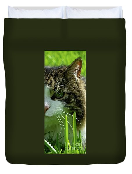 Duvet Cover featuring the photograph Maine Coon Cat Photo A111018 by Mas Art Studio