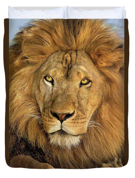 Male African Lion Portrait Wildlife Rescue Duvet Cover