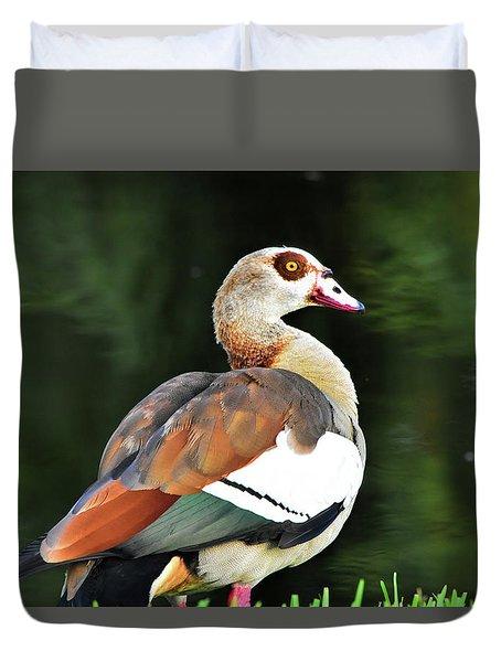 Male Egyptian Goose Duvet Cover