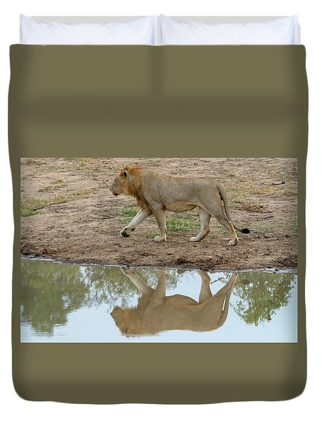 Male Lion And His Reflection Duvet Cover