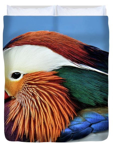 Mandarin Duck Portrait 1 Duvet Cover