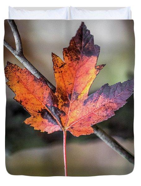 Maple 1 Duvet Cover