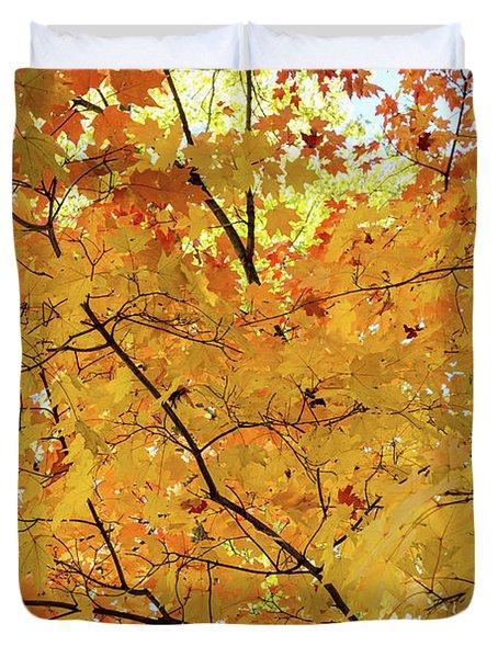 Maple Tree Autumn Color Bliss Duvet Cover