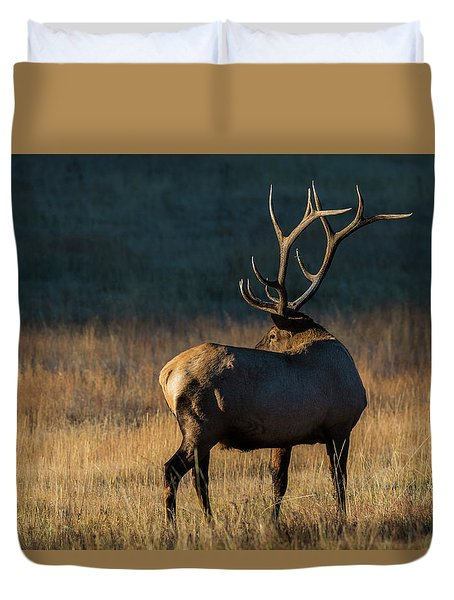 Duvet Cover featuring the photograph ME3 by Joshua Able's Wildlife