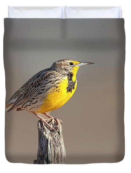 Meadowlark On A Post Duvet Cover