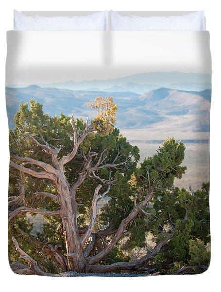 Mesquite In Nevada Desert Duvet Cover