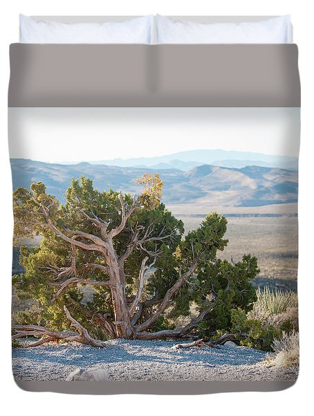Mesquite In Nevada Desert Duvet Cover