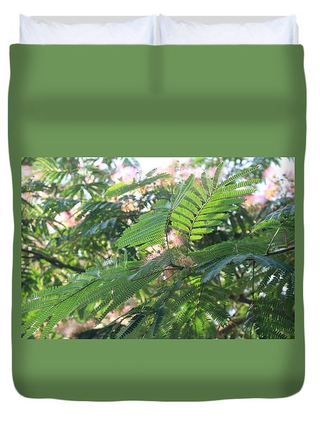 Mimosa Tree Blooms And Fronds Duvet Cover