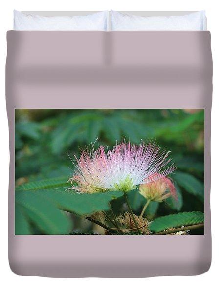 Mimosa Tree In Bloom Duvet Cover
