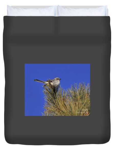 Mockingbird In White Pine Duvet Cover