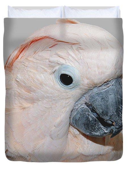 Moluccan Cockatoo Duvet Cover