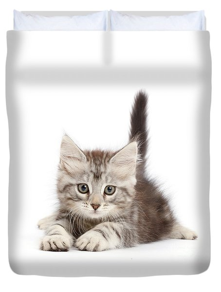 Duvet Cover featuring the photograph Momentary Paws by Warren Photographic