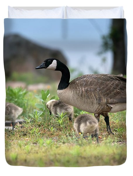 Momma Goose And The Babies Duvet Cover