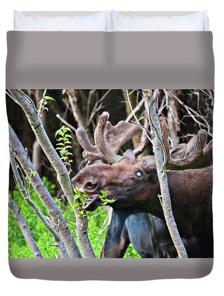Moose With An Anomalous Eye, At Dinner Time Duvet Cover