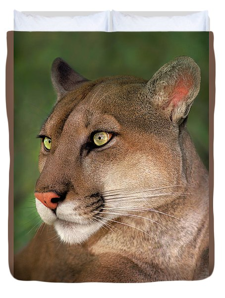 Duvet Cover featuring the photograph Mountain Lion Portrait Wildlife Rescue by Dave Welling