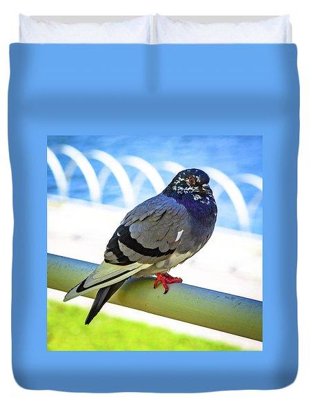 Mr. Pigeon Duvet Cover