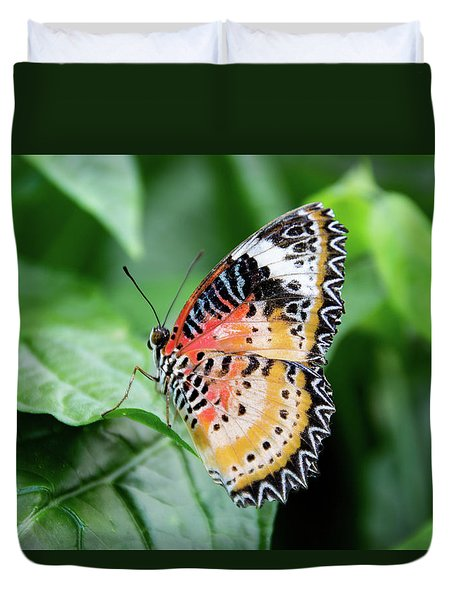 Multi Colored Butterfly Duvet Cover