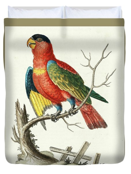 Natural History Of Uncommon Birds Duvet Cover