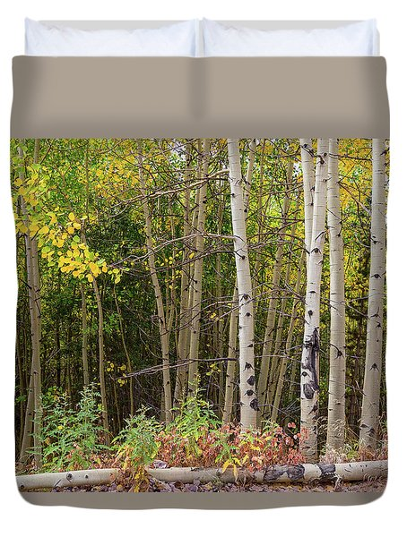 Duvet Cover featuring the photograph Nature Fallen by James BO Insogna