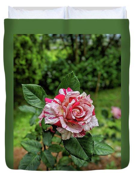 Neil Diamond Rose Duvet Cover