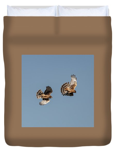 Northern Harriers 7 Duvet Cover