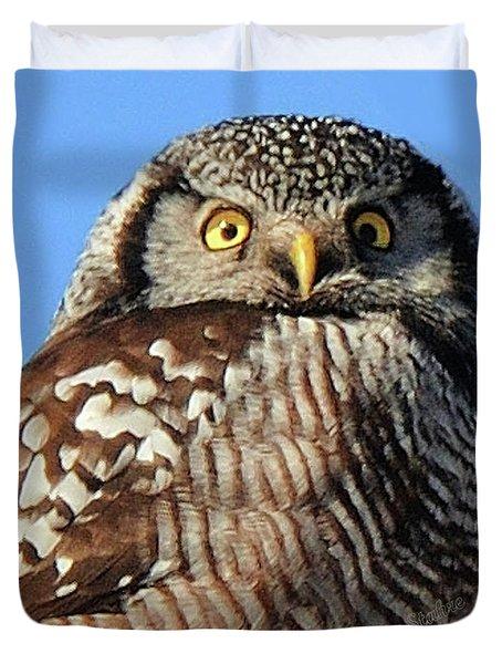 Northern Hawk-owl Duvet Cover