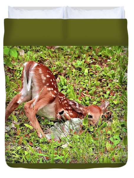 Duvet Cover featuring the photograph Oh Deer by Debbie Stahre