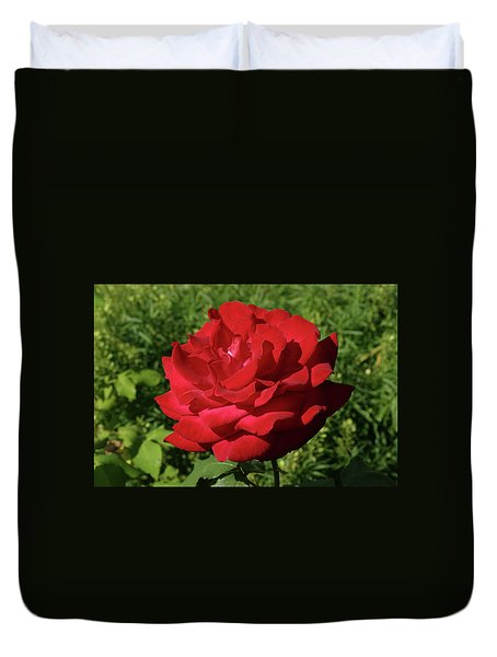Oh The Blood Red Rose Duvet Cover