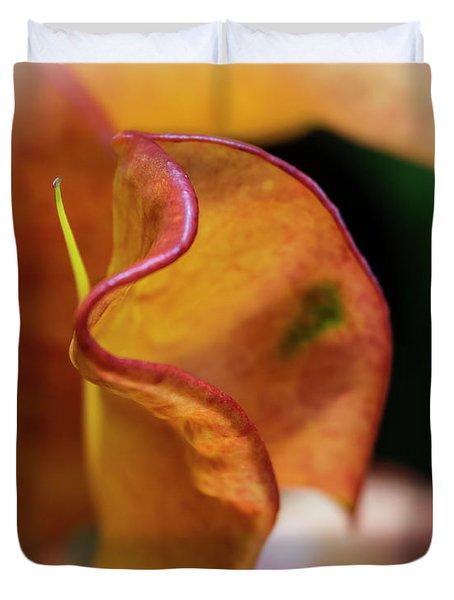 Orange Croton Duvet Cover