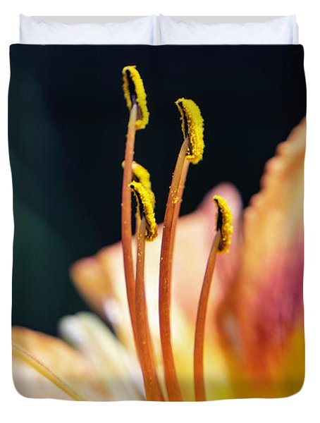 Orange Day Lily Stamen Duvet Cover