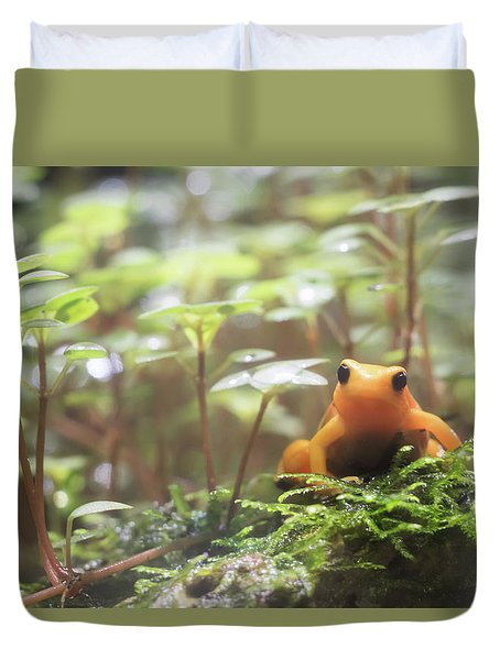 Duvet Cover featuring the photograph Orange Frog. by Anjo Ten Kate